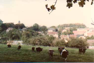 drehsa1984