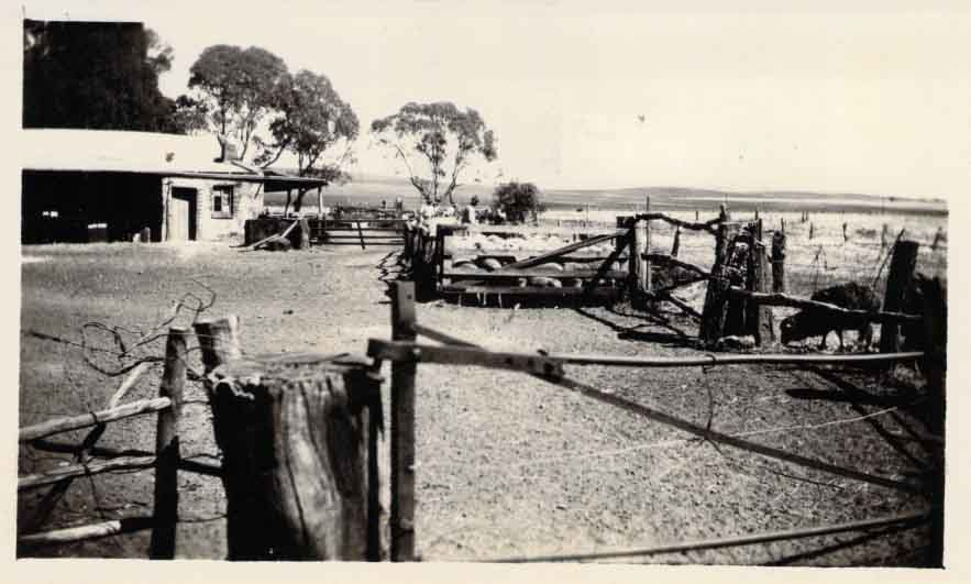Sheepyards later destroyed in 1941 Flood